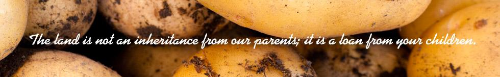 La tierra no es una herencia de nuestros padres sino un préstamo de nuestros hijos.